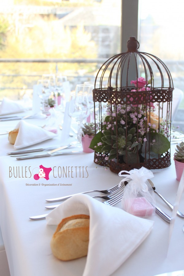 BullesetConfettis VetX mars 2016 (145)