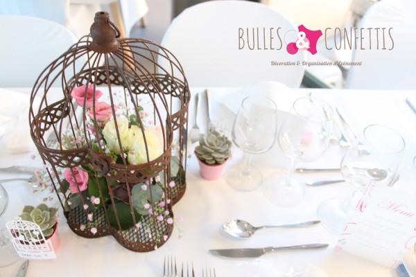 BullesetConfettis VetX mars 2016 (173)