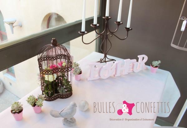 BullesetConfettis VetX mars 2016 (194)
