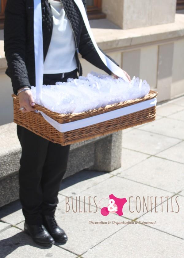 BullesetConfettis VetX mars 2016 (51)